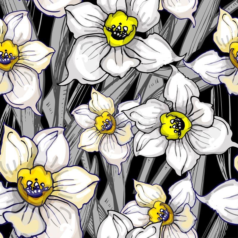 otanical безшовная картина с daffodils цветков руки вычерченными иллюстрация штока