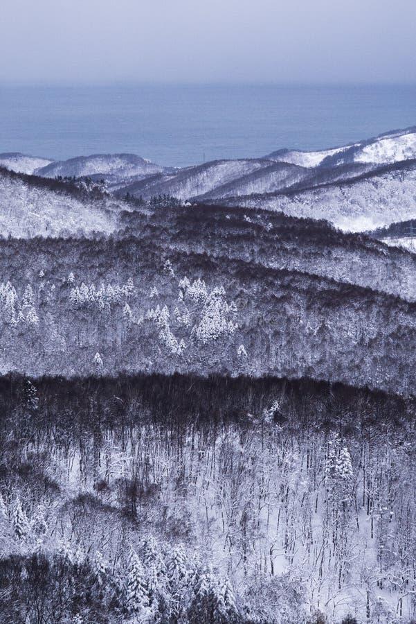 Otaru miasta widok od Tenguyama góry podczas zimy obrazy royalty free
