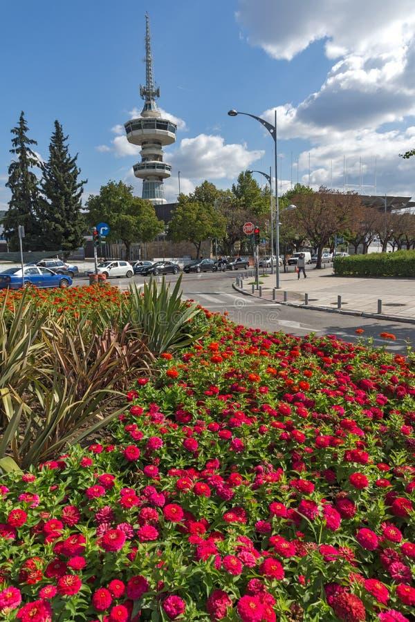 OTE kwiaty w przodzie w mieście Saloniki i wierza, Środkowy Macedonia, Grecja obrazy stock