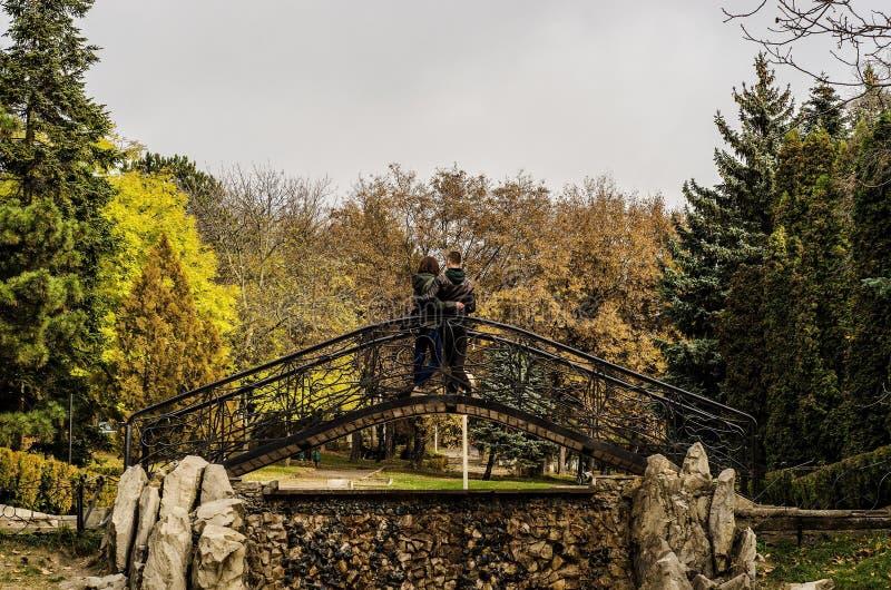 Otoño Amantes en el parque foto de archivo