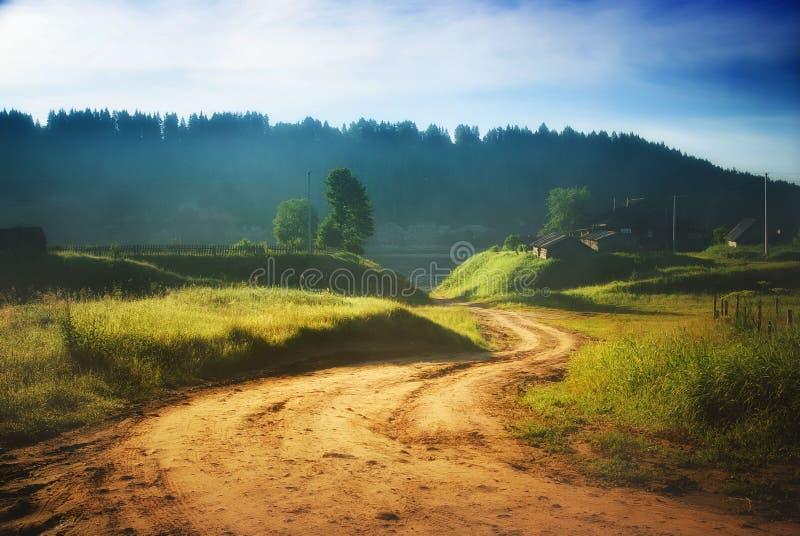 Otoño azul de niebla de la naturaleza del bosque del paisaje imagen de archivo libre de regalías