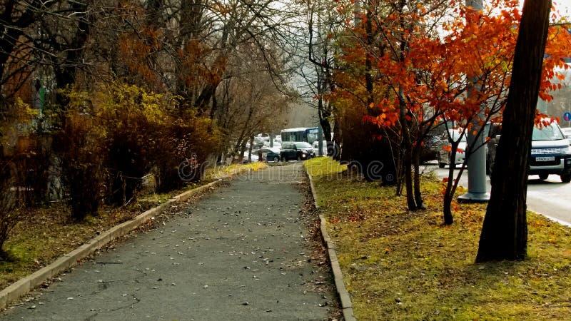 Otoño Día crepuscular Calle de la ciudad llenada de los coches Y una acera vacía imagen de archivo libre de regalías