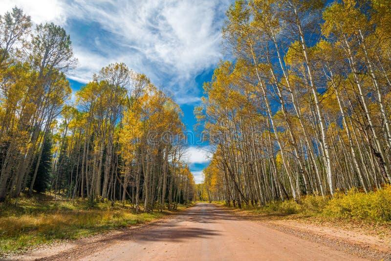 Otoño de Colorado imagen de archivo libre de regalías