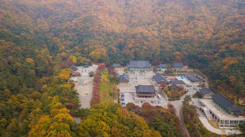 Otoño de la visión aérea de la estatua de Buda en el templo, Seul Corea imagen de archivo libre de regalías