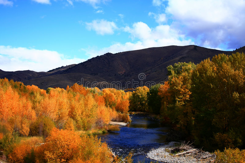 Otoño de madera 4 del río fotografía de archivo