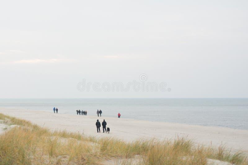 Otoño del mar de la playa imágenes de archivo libres de regalías