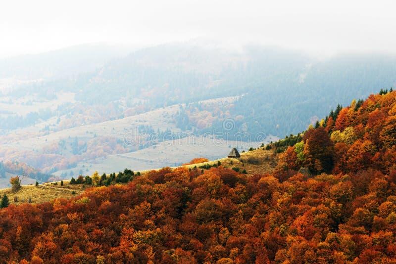 Otoño dramático en montañas rumanas foto de archivo libre de regalías