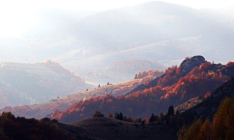 Otoño dramático en montañas rumanas foto de archivo