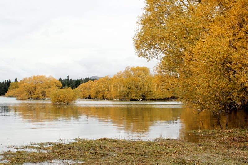 Otoño en el lago Tekapo, Nueva Zelanda imágenes de archivo libres de regalías