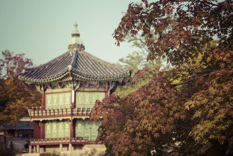 Otoño en el palacio de Gyeongbokgung en Seul, Corea fotos de archivo