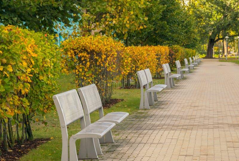 Otoño en el parque de la ciudad Bancos modernos elegantes del metal para el resto en el parque de la ciudad fotos de archivo libres de regalías