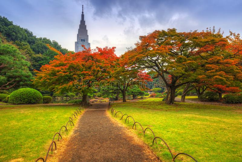 Otoño en el parque de Shinjuku, Tokio imagen de archivo