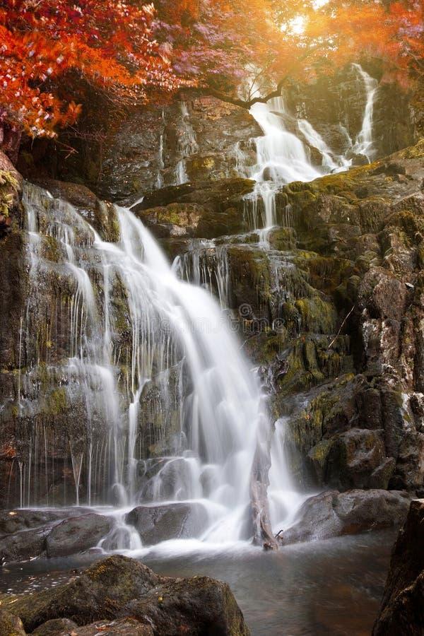 Otoño en el parque nacional de Killarney fotografía de archivo