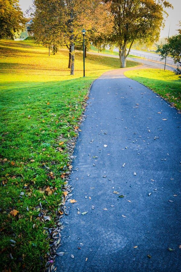 Otoño en el parque público en Suecia que camina para trabajar foto de archivo