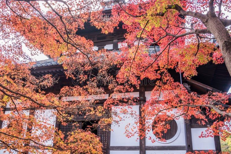 Otoño en el templo del tofukuji imagenes de archivo