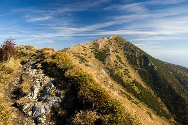 Otoño en la montaña de Mala Fatra imagen de archivo libre de regalías
