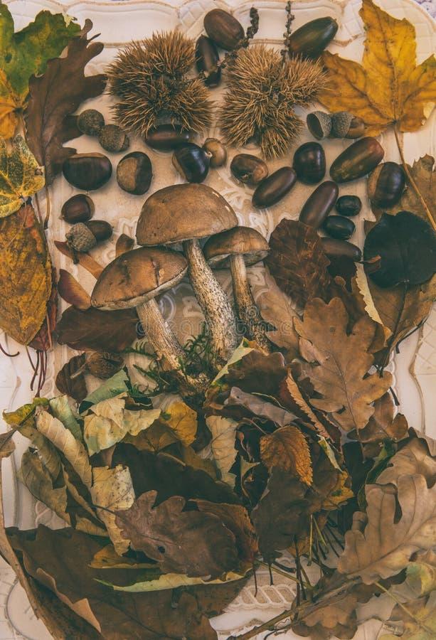 Otoño en la tabla con con las frutas del otoño fotografía de archivo