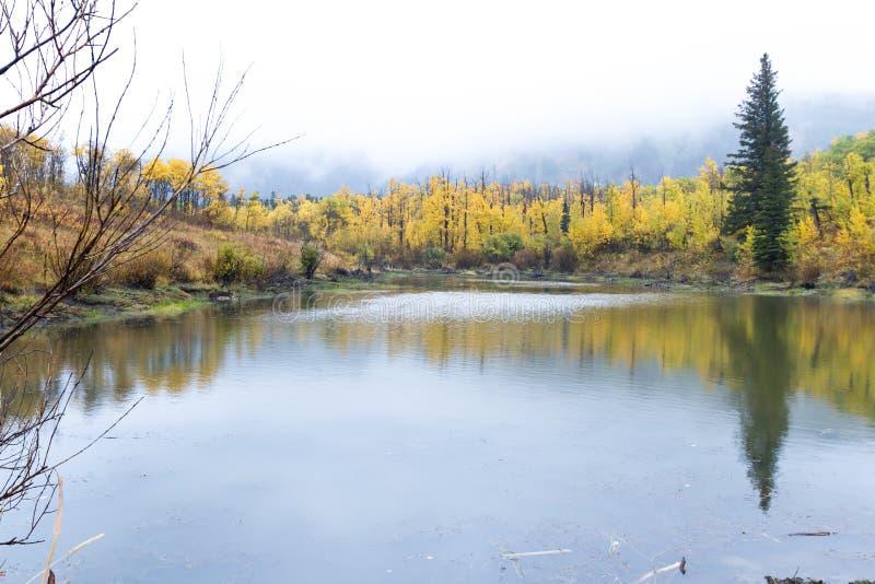 Otoño en Montana imágenes de archivo libres de regalías