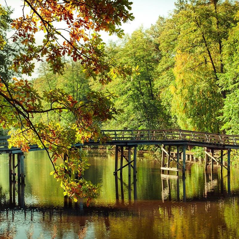 Otoño en parque al aire libre con el puente de madera en el lago foto de archivo