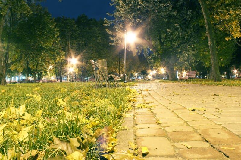 Otoño en parque de la ciudad fotografía de archivo libre de regalías