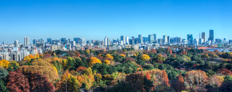 Otoño en Tokio imágenes de archivo libres de regalías