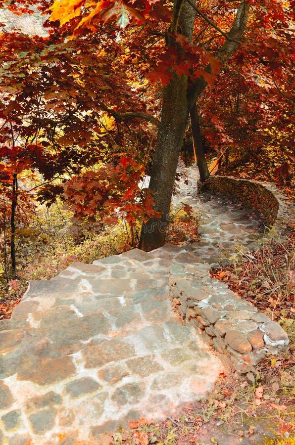 Otoño, escaleras en el jardín fotografía de archivo