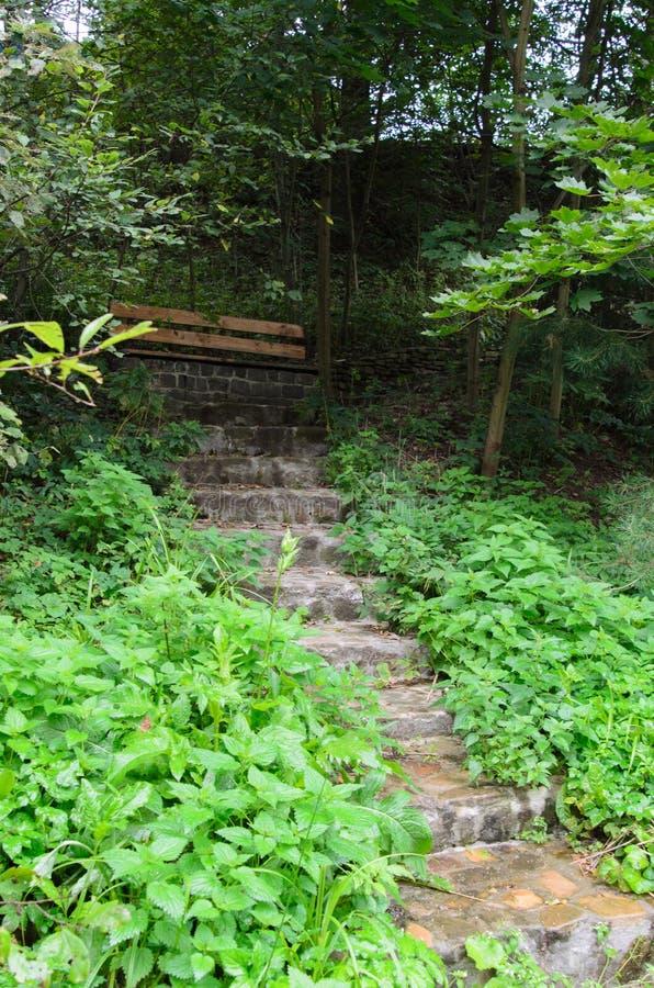 Otoño, escaleras en el jardín fotos de archivo