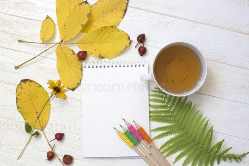 Otoño flatlay en el contexto de madera blanco con una taza de té y de f imagen de archivo