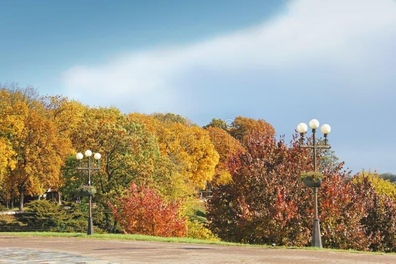 Otoño hermoso Parque del otoño en un fondo del cielo azul fotos de archivo libres de regalías