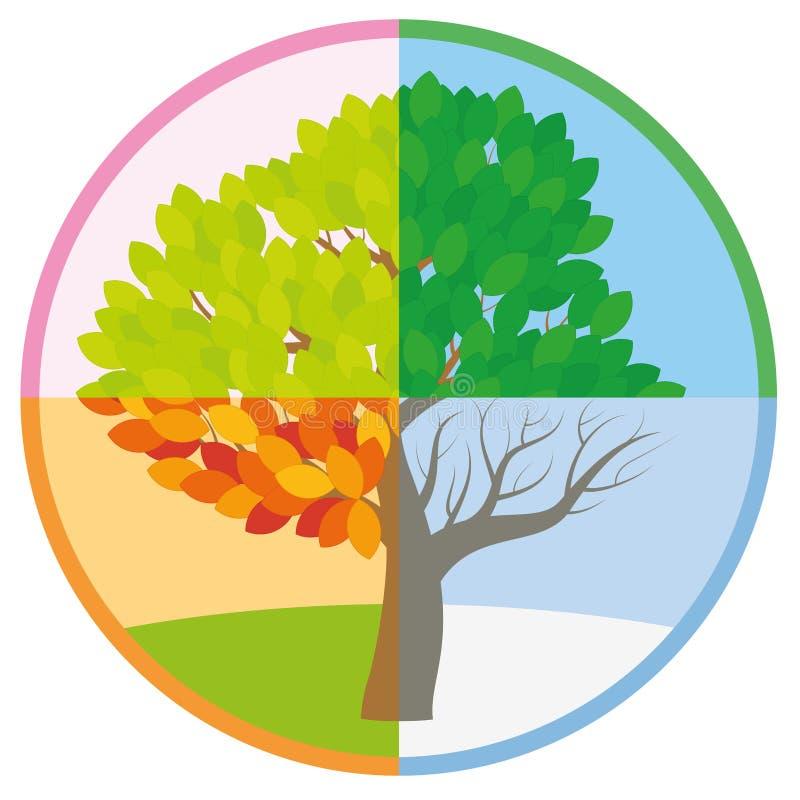 Otoño invierno del verano de la primavera del árbol de cuatro estaciones ilustración del vector