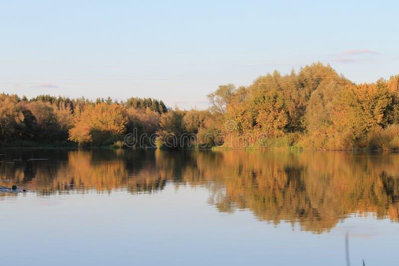 Otoño, río, bosque del otoño, bosque anaranjado, paisaje fotos de archivo