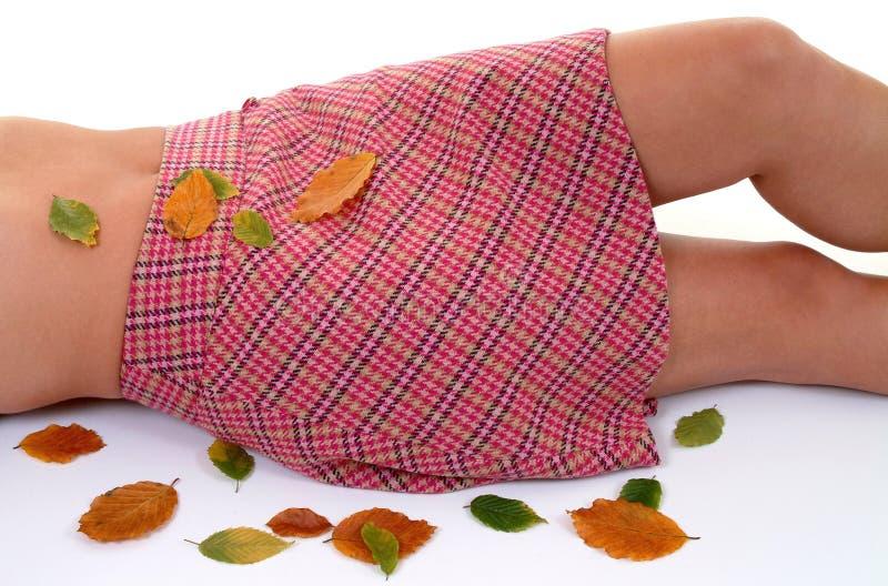 Otoño Suave Imagen de archivo libre de regalías