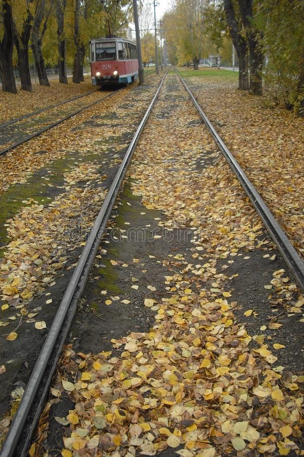 Otoño tarde Lluvia Las hojas caidas cubrieron la manera de la tranvía Hogar de la prisa de los pasajeros de la tranvía después de imágenes de archivo libres de regalías