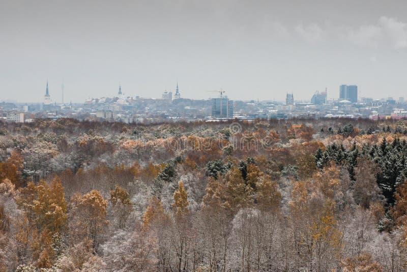 Otoño y primera nieve en Tallinn foto de archivo