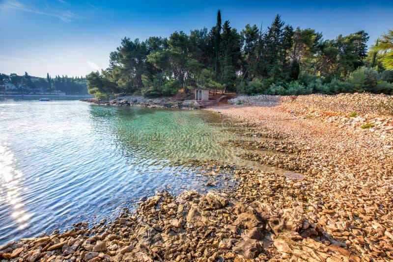 Otoczak plaża na Brac wyspie z sosnami i turkusu oceanu jasną wodą, Supetar, Brac, Chorwacja obraz stock