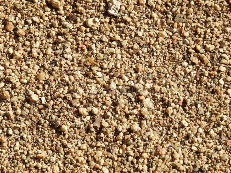 Otoczaki w piasku na ziemi zdjęcia royalty free
