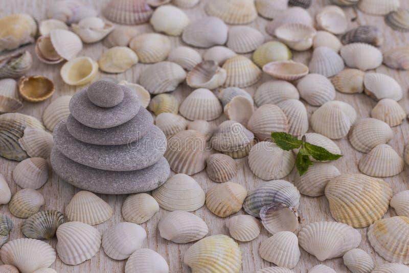 Otoczaki wykładali z ostrosłupem na tle seashells zdjęcia royalty free
