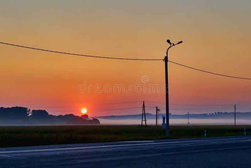 Otta över fält med dimma royaltyfri fotografi