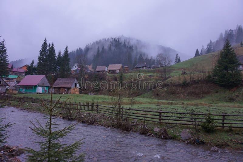 Otta i en by i de Carpathian bergen royaltyfri bild