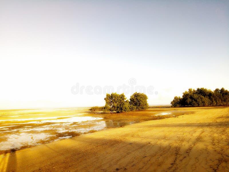 Otta på det beachfront under lowtide arkivbild