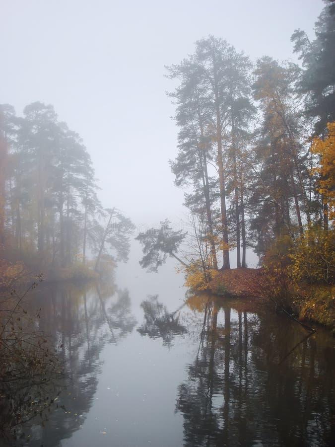 Ottadimma vid en sjö med den färgrika skogen royaltyfria bilder