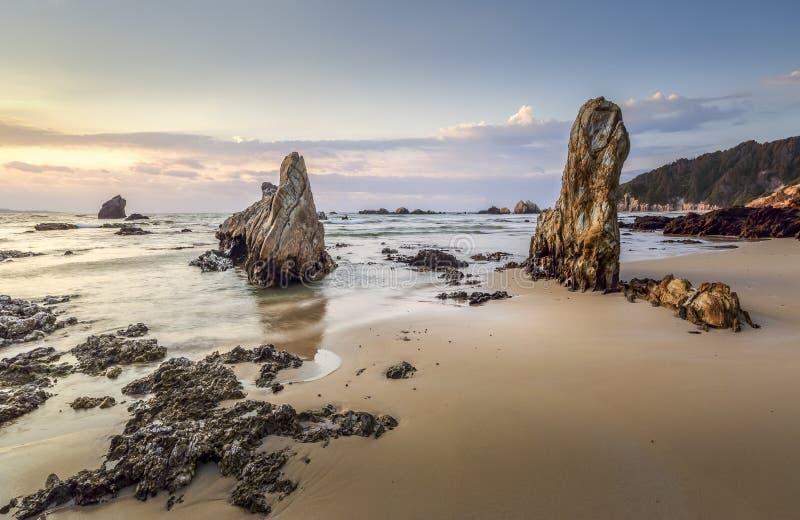 Ottaljus för sydkust NSW på stranden royaltyfria foton