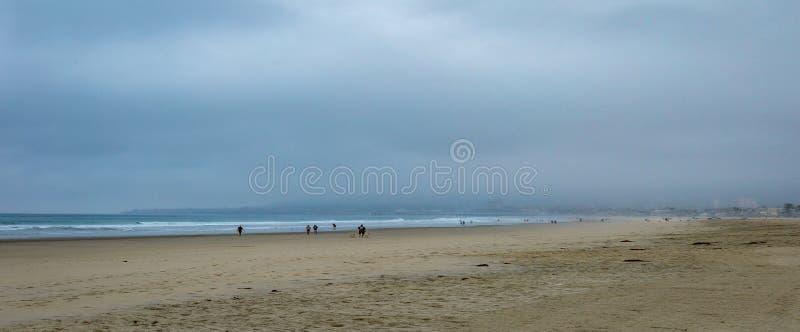 Ottamist på stranden arkivbild