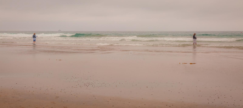 Ottamist på stranden arkivbilder