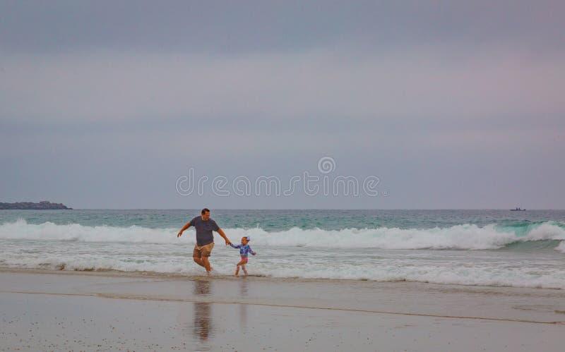 Ottamist på stranden royaltyfria bilder