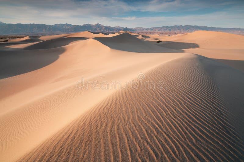 Ottasolljus över sanddyn och berg på plana dyn för Mesquite, Death Valley nationalpark, Kalifornien USA royaltyfria foton