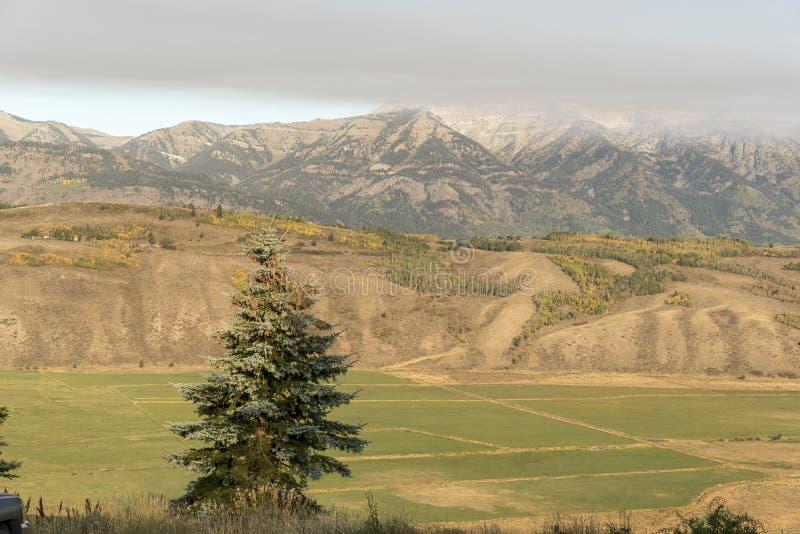 Ottaväder främre storslagna Tetons från vårliten vikranchen Jackson Wyoming fotografering för bildbyråer