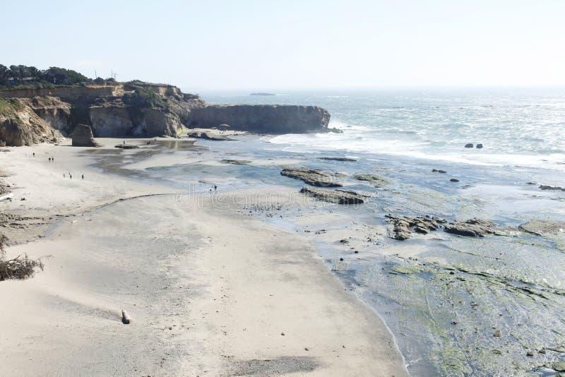 Download Otter Crest, Oregon stock image. Image of shore, tree - 20968957