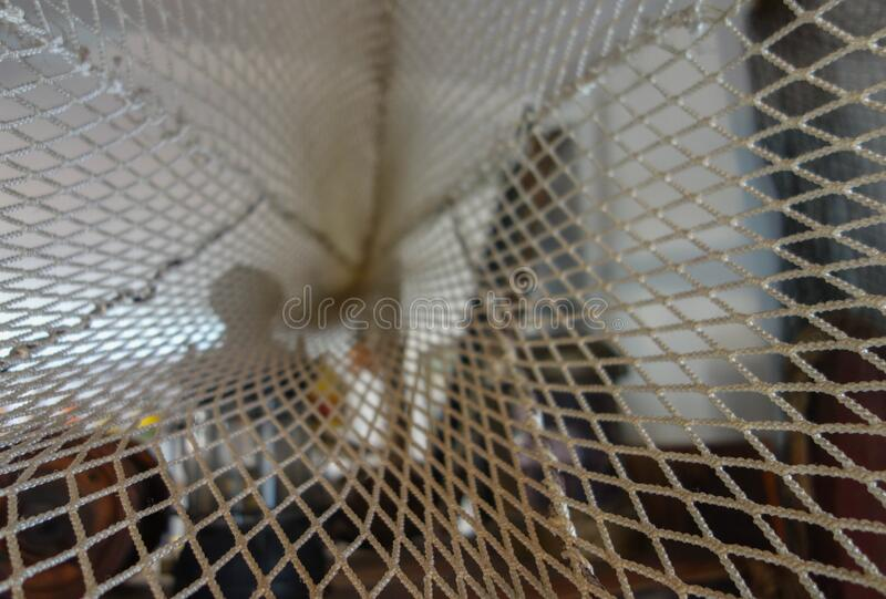 Otter net tunnel. royalty free stock image