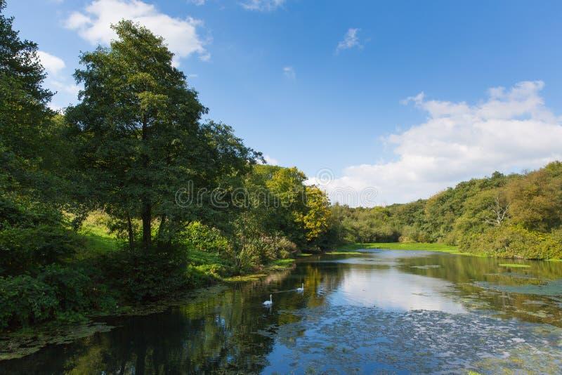 Otterhead jeziora Wschodni Devon Anglia uk w Blackdown wzgórzach obraz royalty free